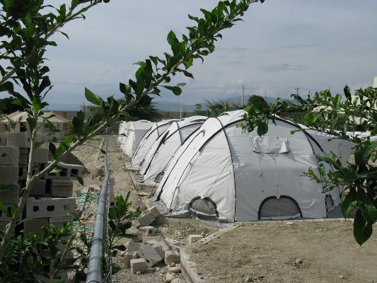 Tents in the tuberculosis field hospital.